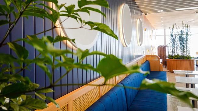 Những tông màu chủ đạo trong của phòng chờ hạng thương gia Bamboo Airways.