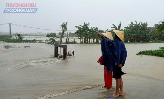 Tại huyện Yên Thành, nước cũng bắt đầu ngập cục bộ ở nhiều xã