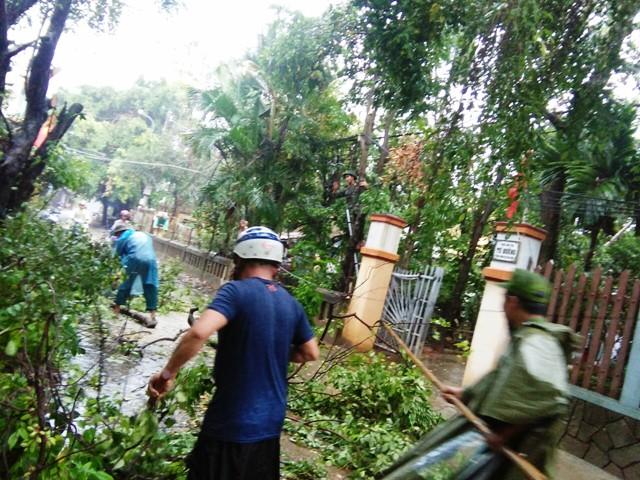 Dọn dẹp sau bão ở phường Vỹ Dạ (Huế)