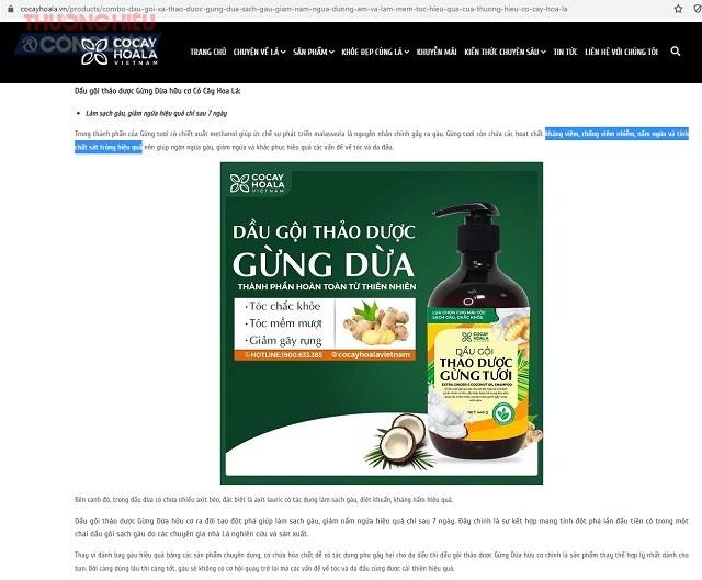 """ản phẩm dầu gội thảo dược Gừng Dừa hữu cơ Cỏ Cây Hoa Lá được quảng cáo với các từ ngữ có tác dụng như thuốc là """"chống viêm nhiễm, diệt khuẩn, kháng nấm"""""""