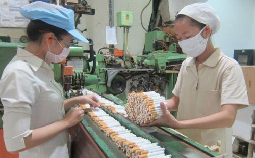 Giấy phép sản xuất thuốc lá sẽ có thời hạn 5 năm