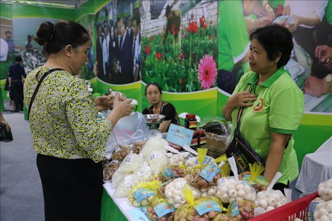 Trưng bày, giới thiệu và bán các sản phẩm OCOP thành phố Hà Nội năm 2020