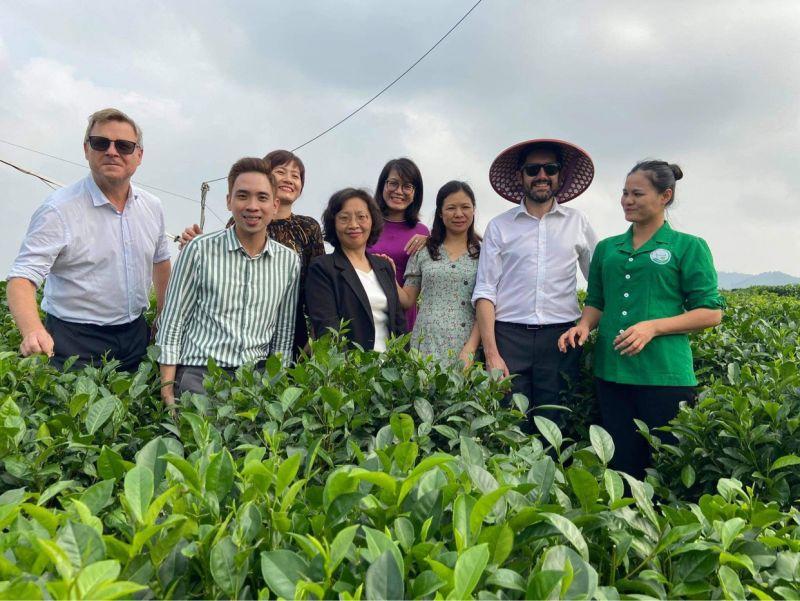 Du khách có thể trải nghiệm  du lịch với việc tham quan văn hoá trà tại vùng chè Tân Cương (Du khách hào hứng với việc tham quan tại HTX Tâm Trà Thái)