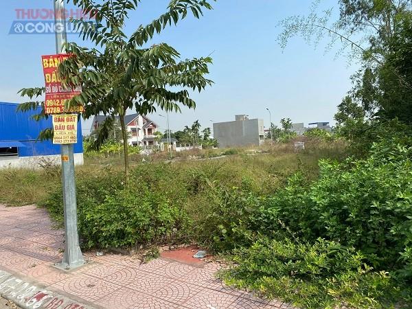 Mục sở thị tại các khu đất đã đấu giá hầu như vẫn bỏ hoang cỏ mọc, dân cư thưa thớt.