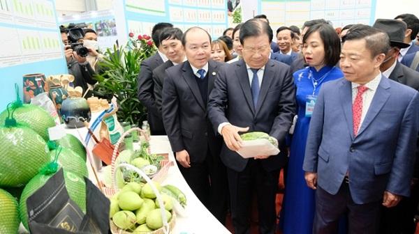 Phó thủ tướng Trịnh Đình Dũng thăm quan các gian trưng bày sản phẩm tại triển lãm