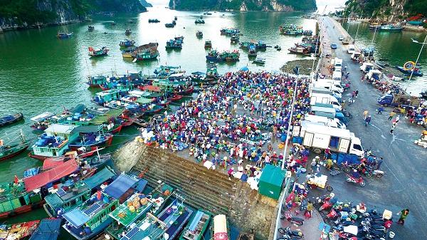 Hạ Long (Quảng Ninh), điểm đến du lịch hấp dẫn
