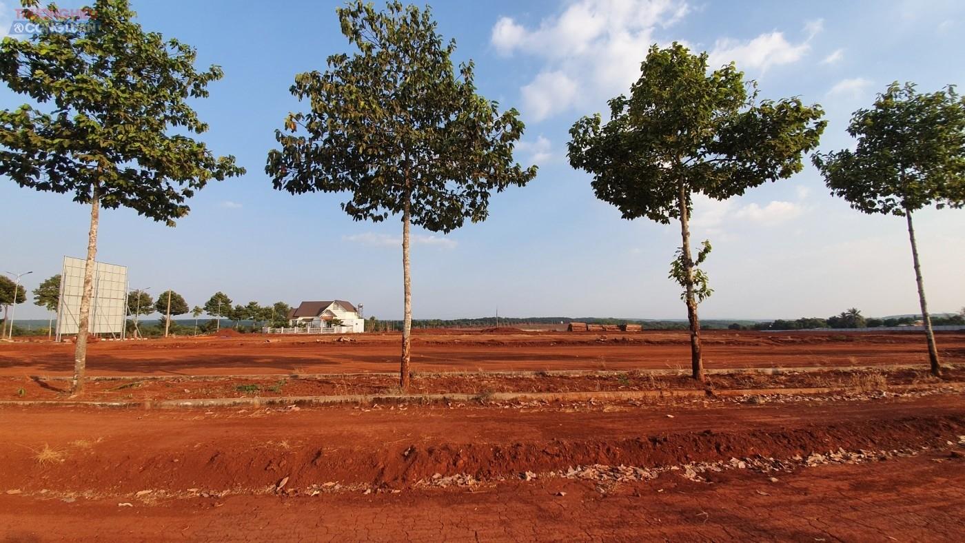 Bãi đất trống tại dự án Dự án Mỹ Lệ Capital