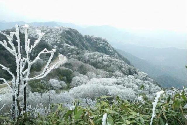 Dự báo thời tiết 18/1: Bắc Bộ, Bắc Trung Bộ rét đậm rét hại, vùng núi cao mưa tuyết