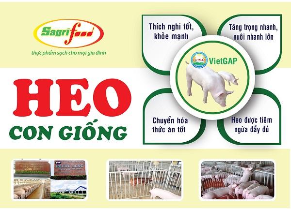 Sagrifood đơn vị cung cấp con giống chất lượng cao