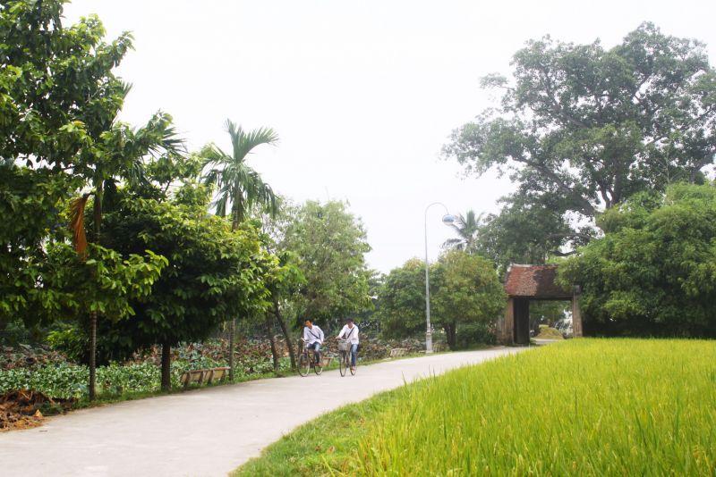 Cổng làng Đường Lâm dưới bóng cây đa hơn 300 tuổi