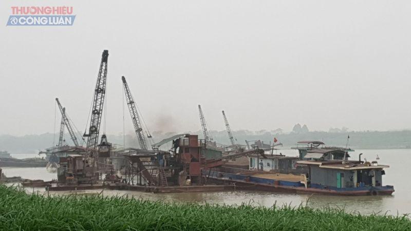 Gần chục chiếc tàu dây văng, tầu cầu của công ty Gia Thịnh