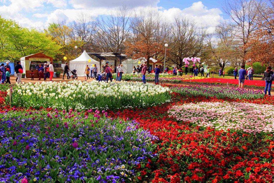 Lễ hội hoa chào hè 2021 lớn nhất từ trước tới nay tại thành phố Sầm Sơn (Ảnh minh hoạ)