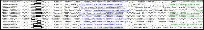 Một phần danh sách người dùng Facebook trong vụ rò rỉ dữ liệu lần này