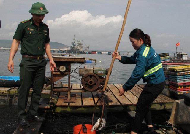 các lực lượng chức năng của tỉnh Thanh Hóa đã nhanh chóng về kiểm tra, lấy mẫu nước, mẫu cá gửi đi xét nghiệm.