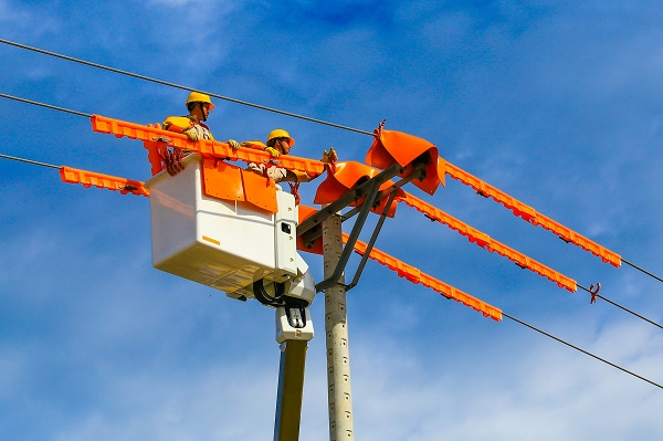 Sửa chữa điện live line