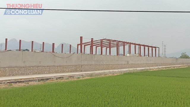 Chủ đầu tư đã xây dựng tường rào cao khoảng 3m bao quanh khu đất rộng 47.000 m2.