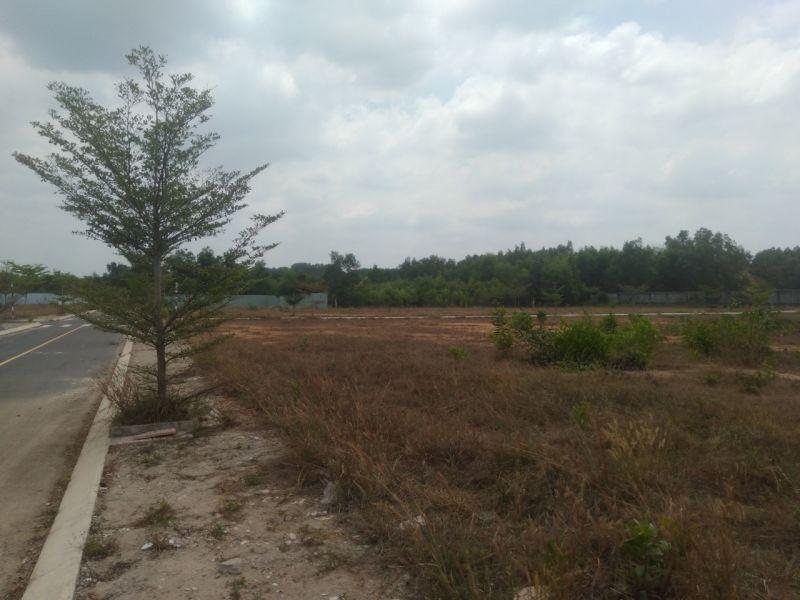 """Khu đất được rao bán với tên gọi """"Dragon City"""" thuộc đất rừng sản xuất được chủ đất phân lô, xây dựng đường giao thông"""