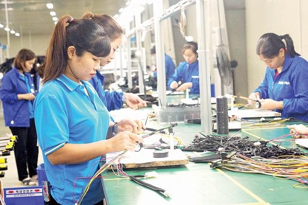 Sản xuất linh kiện điện tử, dây cáp kết nối phục vụ xuất khẩu tại Công ty TNHH Bando Vina, Khu công nghiệp Thụy Vân, thành phố Việt Trì.
