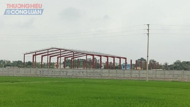 doanh nghiệp còn cho triển khai xây dựng tường bao quanh và thi công móng một số công trình phụ trợ.