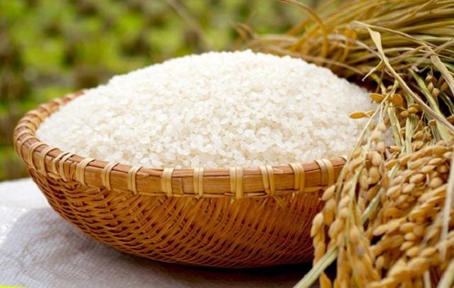 Ngày 3/5: Giá lúa gạo giao dịch ở mức ổn định
