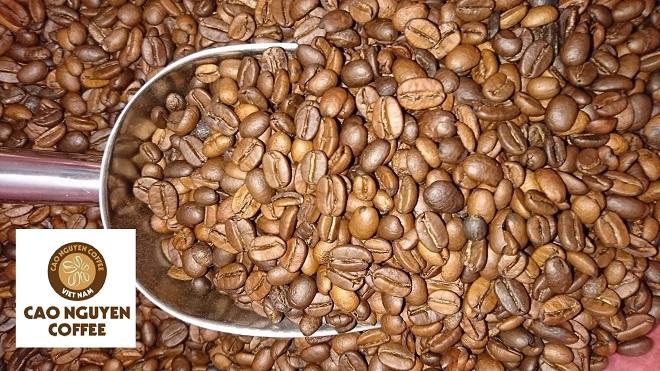 Giá cà phê ngày 1/6: Thị trường thế giới tiếp đà tăng (Ảnh minh họa)
