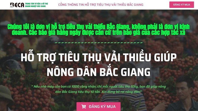 Gỡ khó cho tiêu thụ nông sản Bắc Giang đang ứng dụng chuyển đổi số để tiêu thụ vải thiều