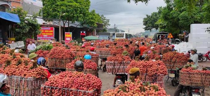 """Bắc Giang đang kiến nghị Chính phủ cần có chính sách tạo """"luồng xanh"""" từ vùng nguyên liệu đến cửa khẩu biên giới."""