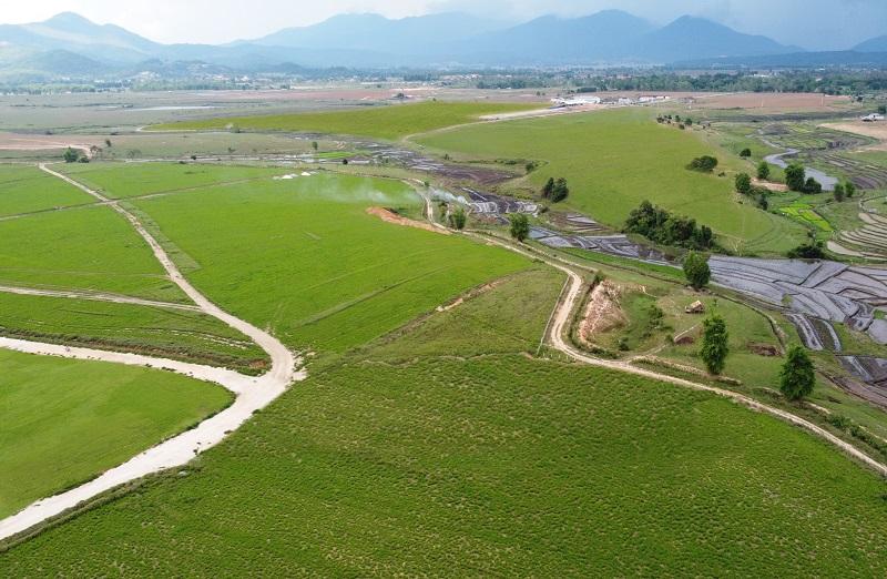 Cao nguyên Xiêng Khoảng có lợi thế lớn về quỹ đất, khí hậu phù hợp với chăn nuôi bò sữa.