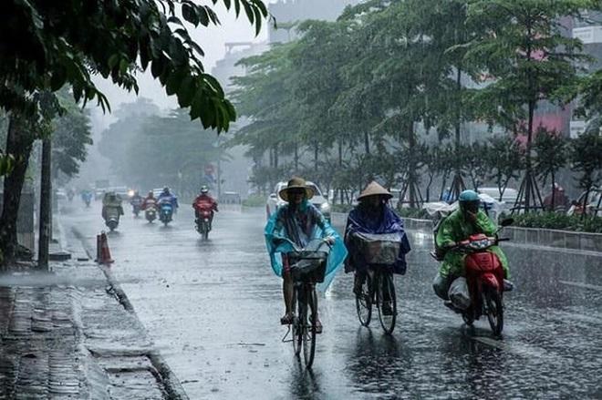 Hôm nay 19/7, Bắc Bộ có mưa vừa mưa to và giông. Ảnh minh họa