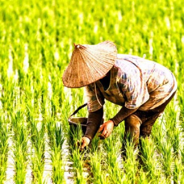 Tỉnh Thanh Hóa thành lập Trung tâm Hỗ trợ nông dân tỉnh.