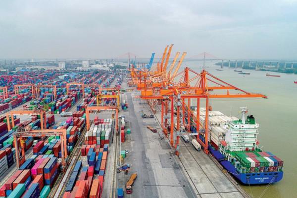 Hàng hải vận chuyển miễn phí hàng hóa chống dịch Covid-19