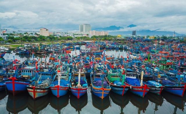 Chính quyền TP.Đà Nẵng chính thức tạm dừng các hoạt động tại Cảng cá và âu thuyền Thọ Quang.