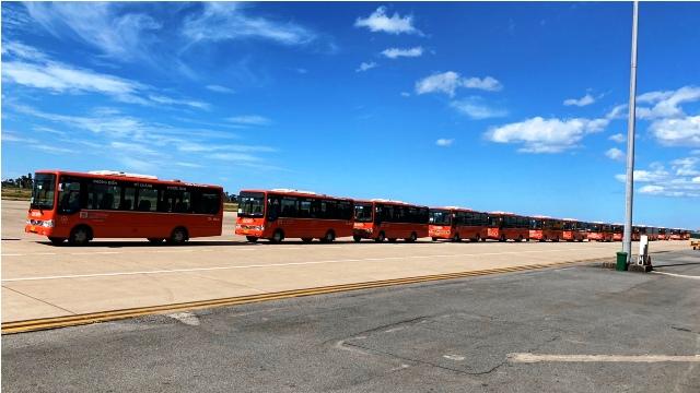 Những chuyến xe chở 239 công dân về từ TP Hồ Chí Minh