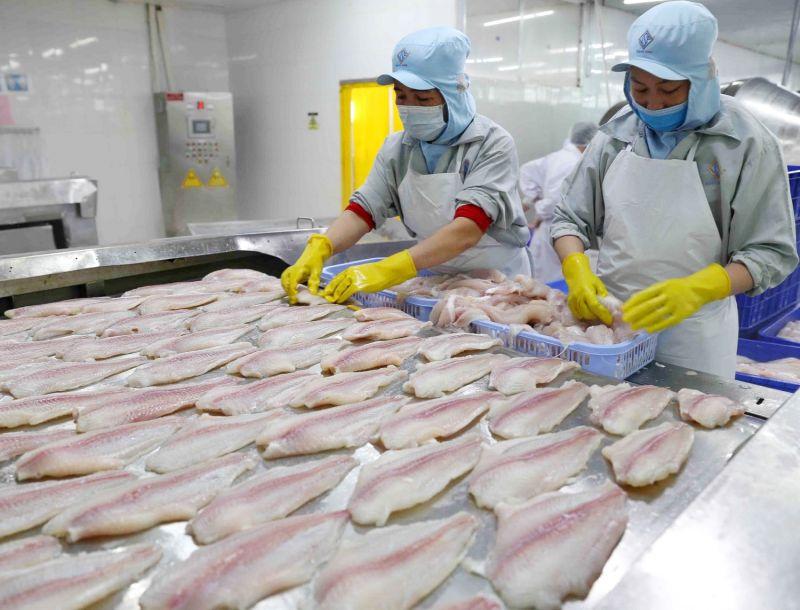 Việc bảo vệ thương hiệu giúp doanh nghiệp an toàn tiếp cận thị trường xuất khẩu
