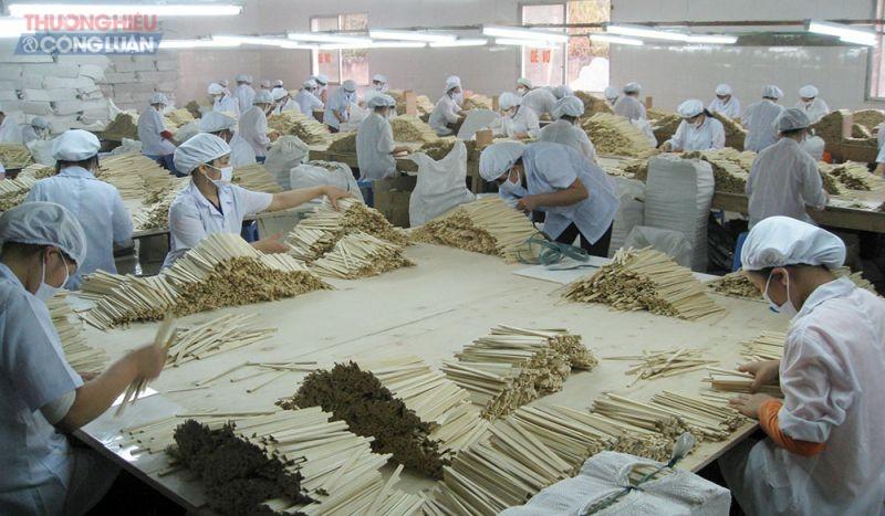 Sản xuất đũa xuất khẩu tại Công ty TNHH Thái Hoàng, xã Quế Lâm, huyện Đoan Hùng. - Công nhân phân loại đũa.