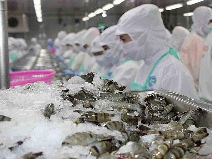 Nhập khẩu Tôm Việt Nam vào thị trường Trung Quốc trong tháng 8/2021 đạt 11.600 tấn, giảm 33% so với cùng kỳ (Ảnh minh họa)