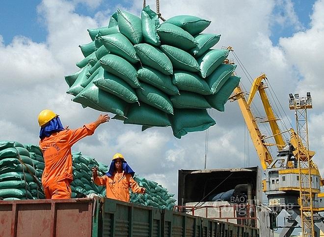 """Nghị quyết 128 gỡ """"nút thắt"""" thiếu lao động cho doanh nghiệp xuất khẩu gạo"""